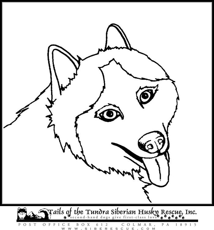 Science The Fun Zone Coloring Book Husky Coloring Book, Printable ...