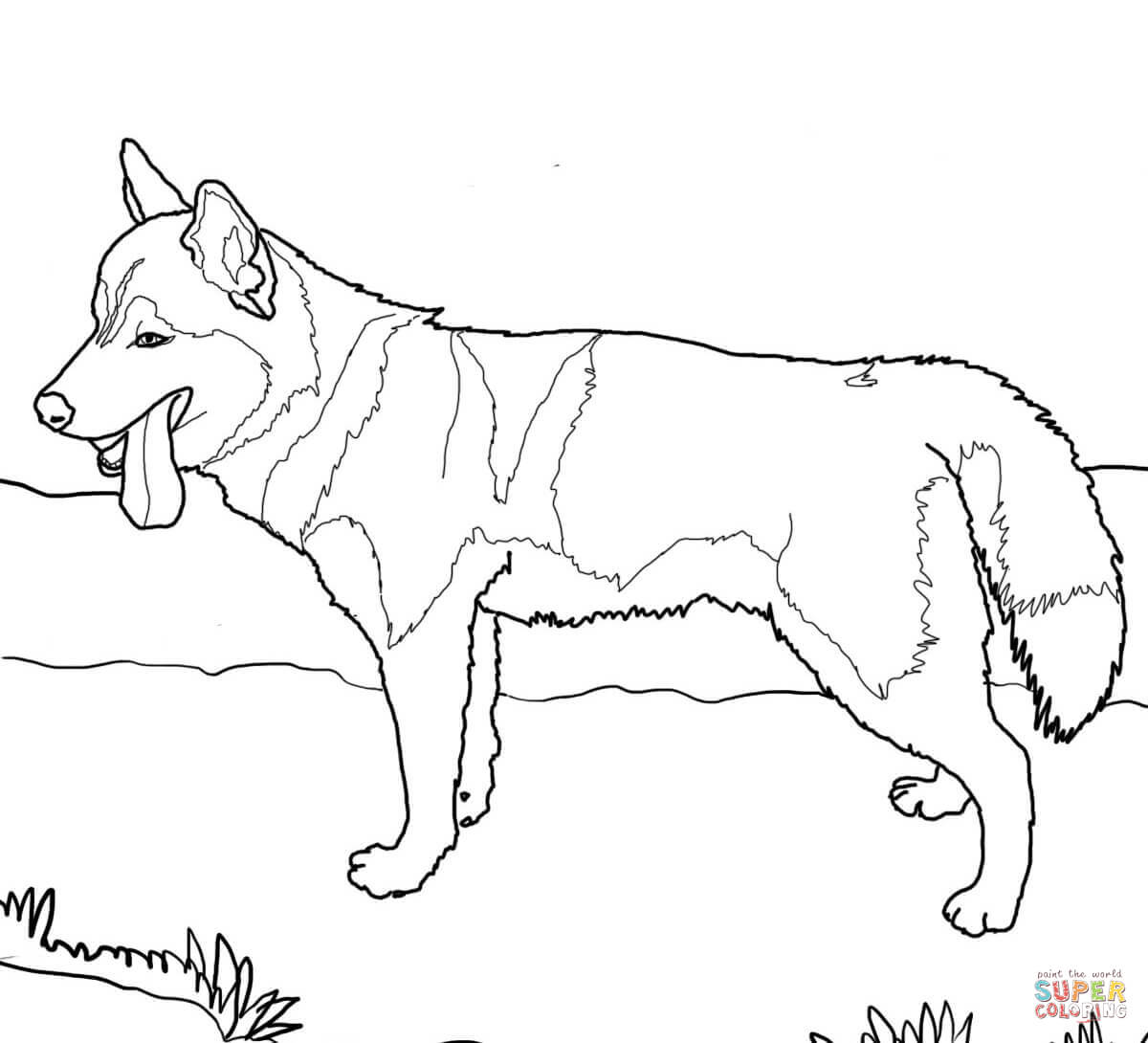 German Shepherd Dogs Coloring Page Free Printable Pages