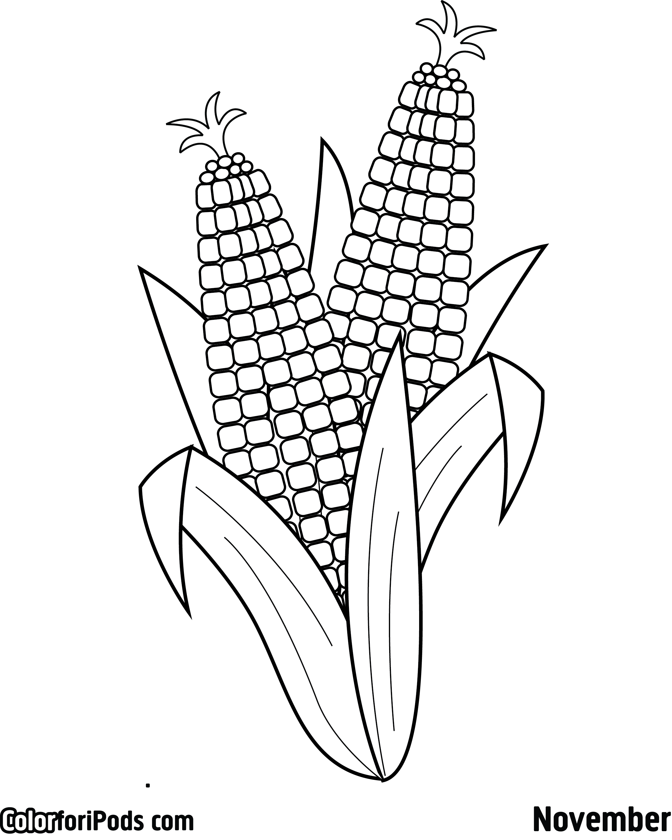 Corn on the cob coloring sheet sketch coloring page for Corn stalk template
