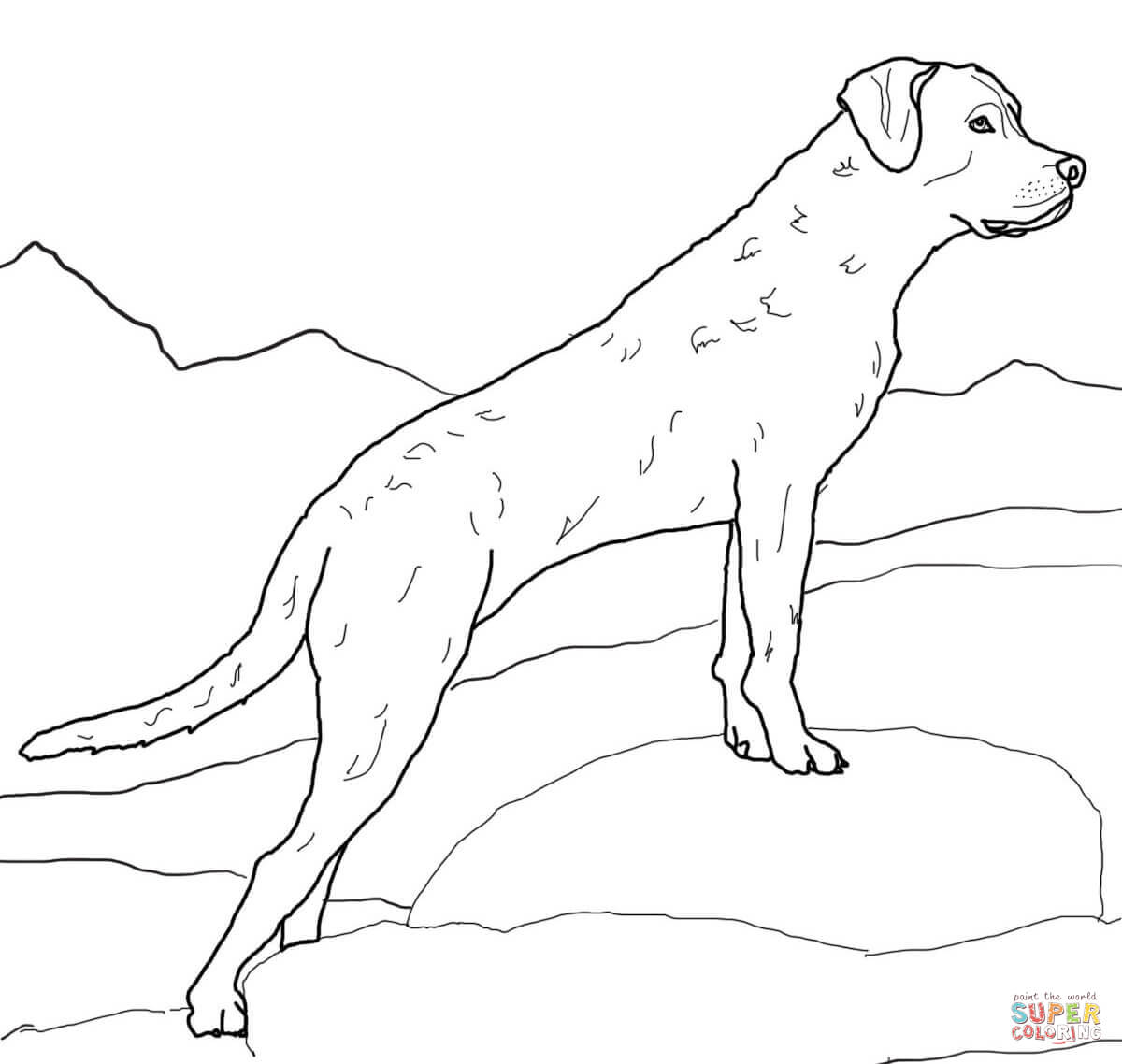 Golden Retriever coloring page | Free Printable Coloring Pages