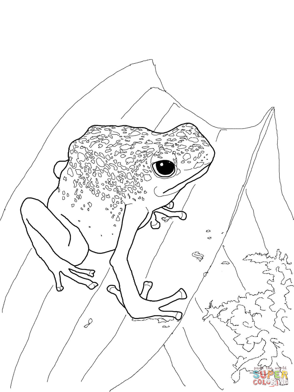 Free printables color blue - Blue Poison Dart Frog Coloring Page Free Printable Coloring Pages