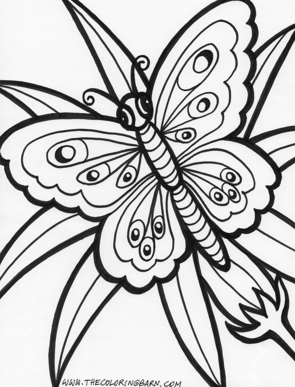 Free coloring pages of hawaiian flowers coloring home for Coloring pages of hawaiian flowers