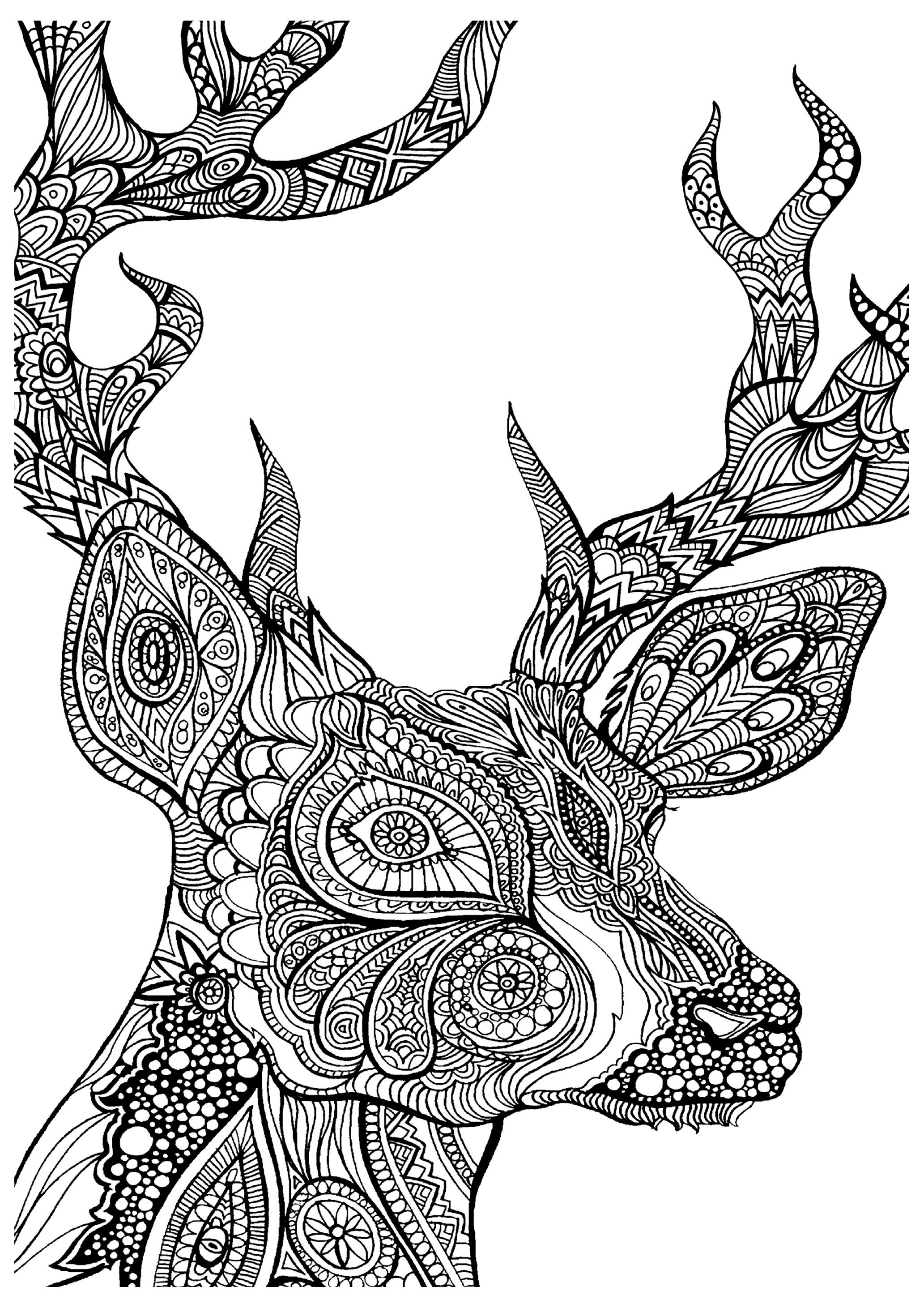 Complex Coloring Pages Of Animals Coloring Home