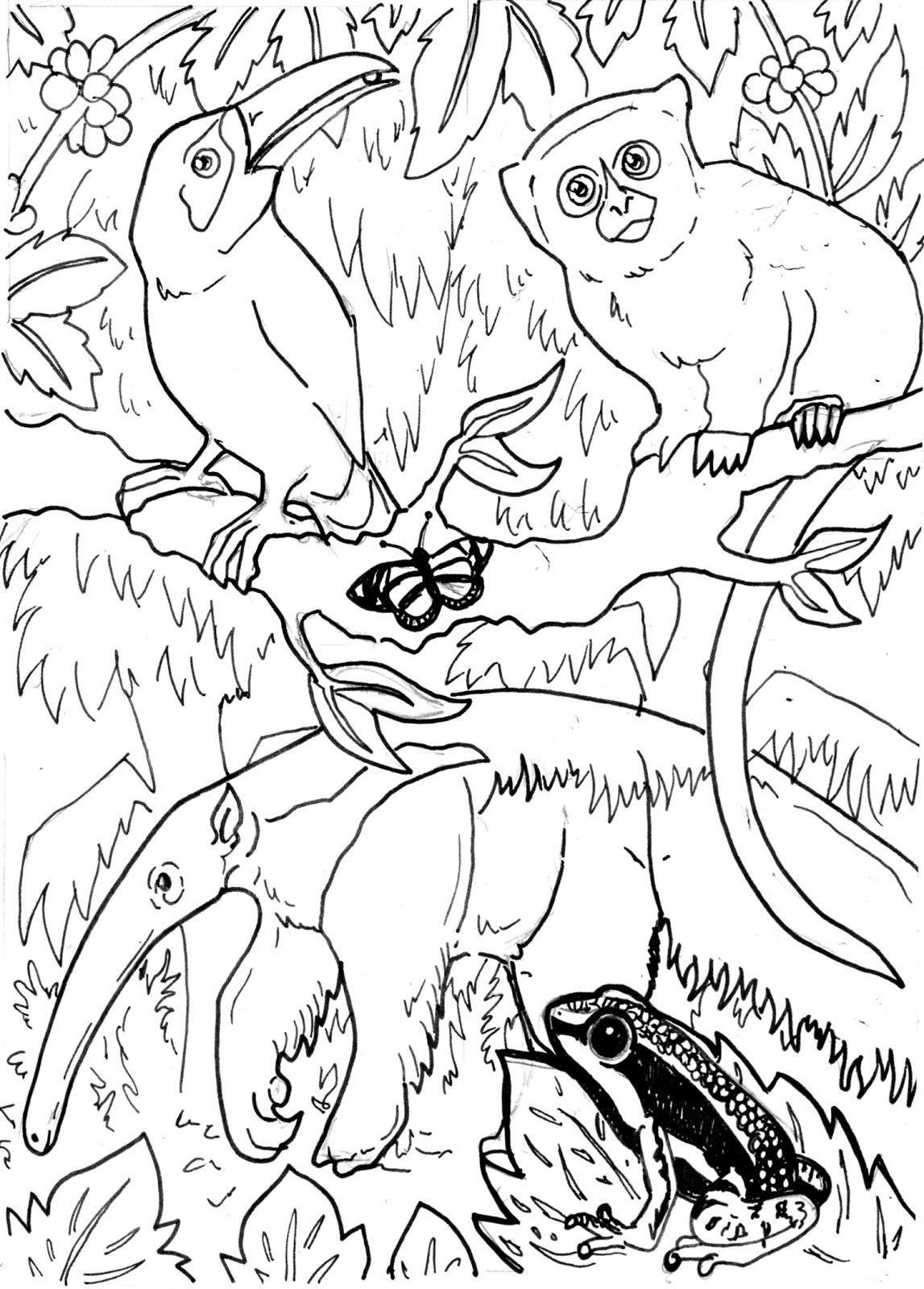 Coloring pages rainforest - Printable Rainforest Animal Coloring Pages Free Printable