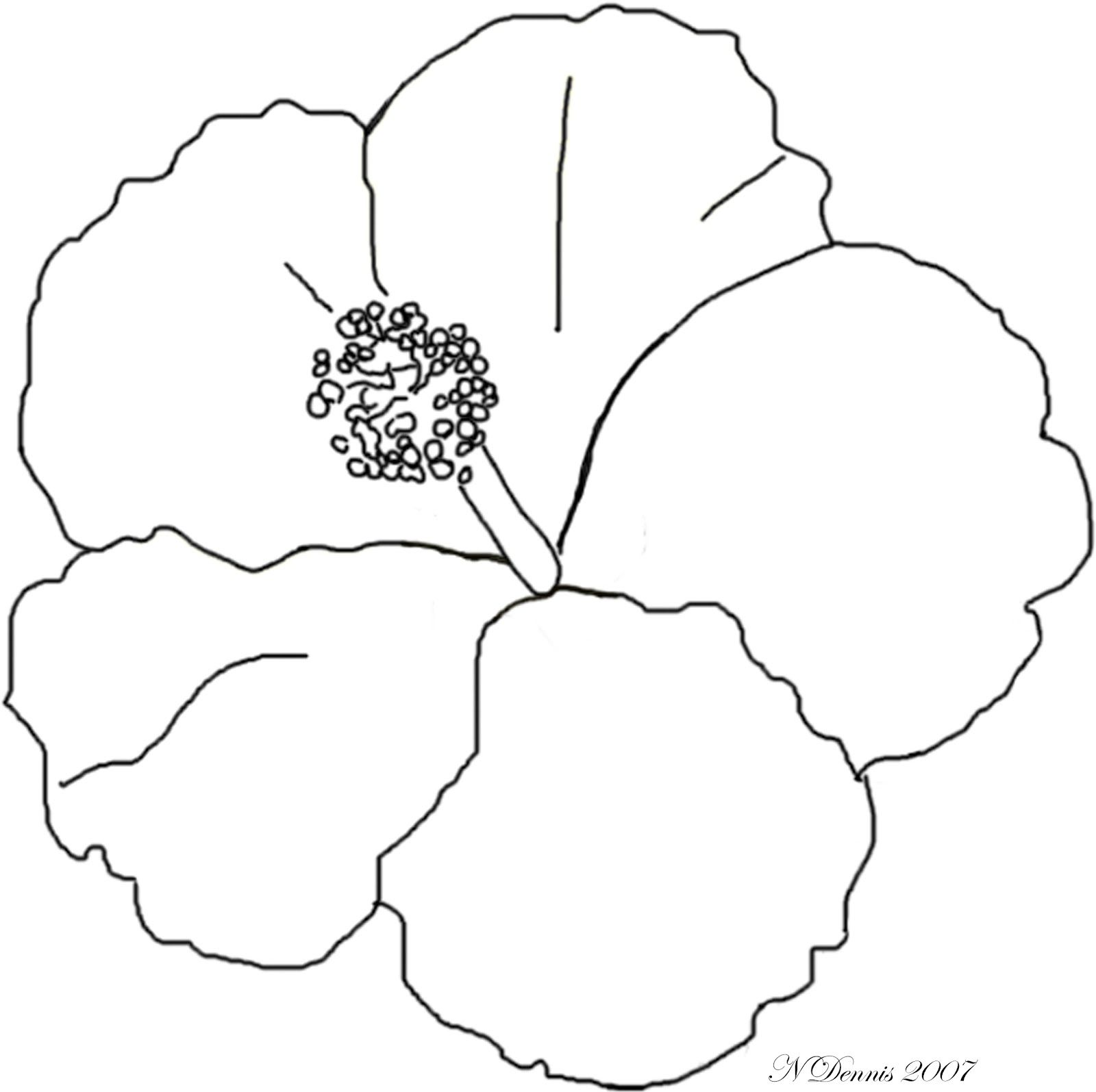 Adult Coloring Page For Hibiscus Flower - Coloring Pages For All Ages