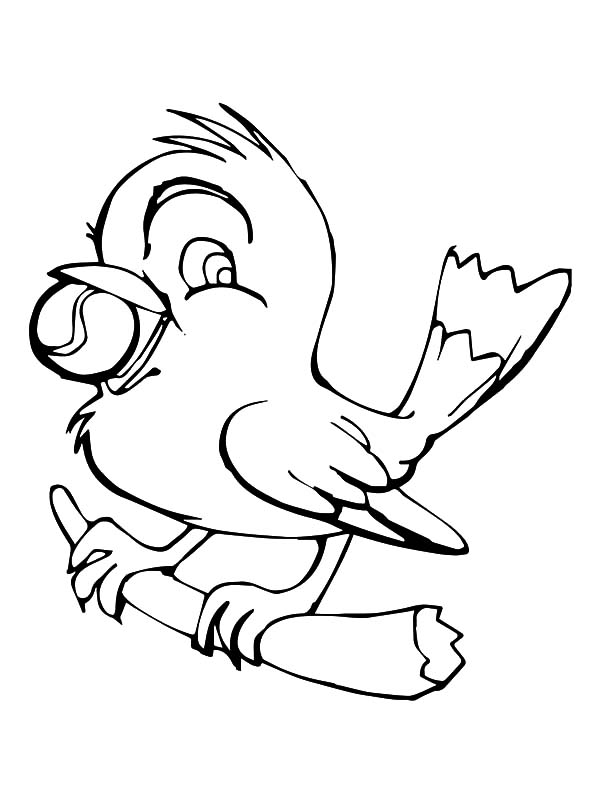 canary bird coloring pages - photo#30