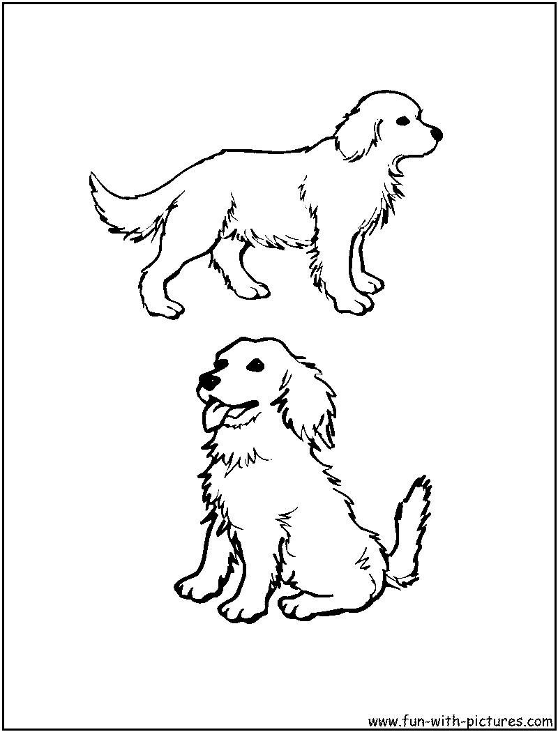 7 Pics of Dogs Golden Retriever Coloring Pages Realistic - Golden ...