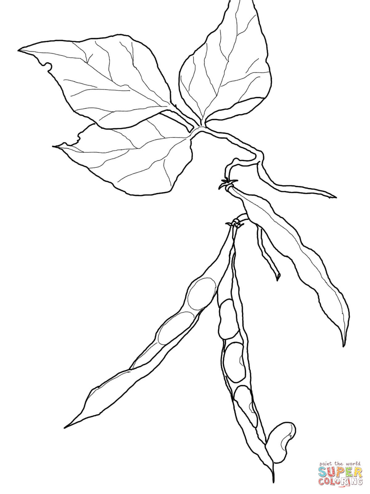 Green Bean coloring page | Free Printable Coloring Pages