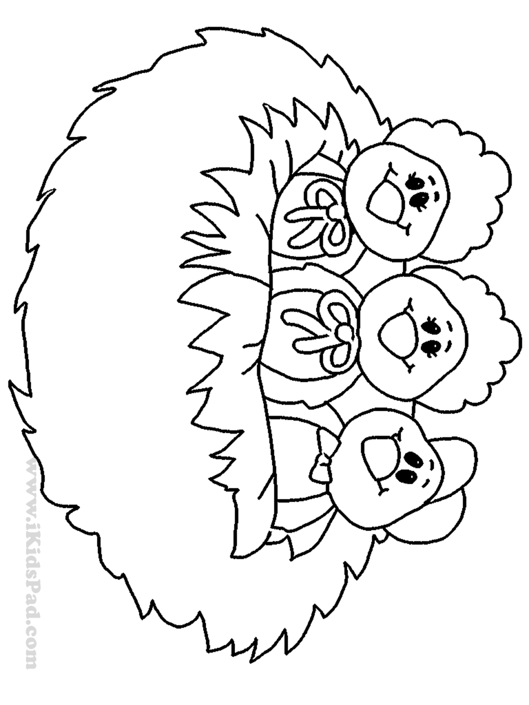 nests coloring pages - photo#9