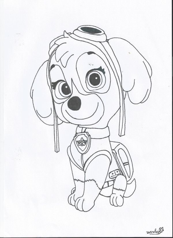 Skye PAW Patrol Coloring Pages Cartoons - Coloring Home