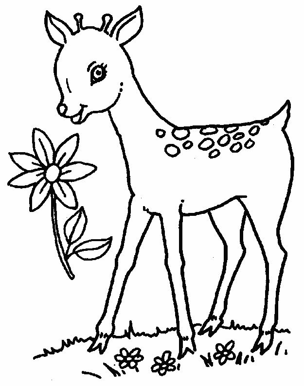 Fun Coloring Pages   Adults #5