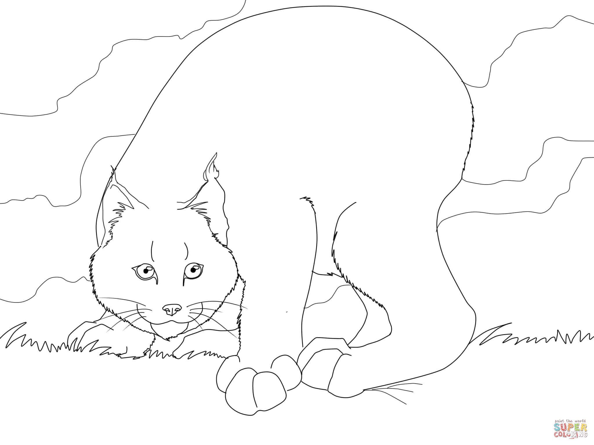 lynx coloring pages free - photo#36