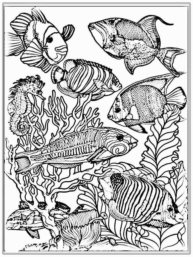 fish coloring pages difficult - photo#12