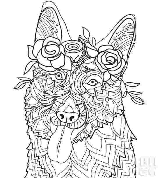 German Shepherd Dog Coloring Pages Coloring Pages Coloring - Coloring  Home