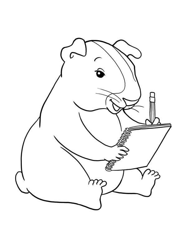 Guinea Pig Writing Coloring Page Color Luna Coloring Home