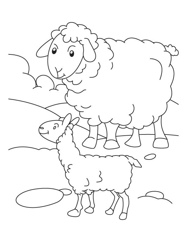 Mother Sheep With Its Lamb Coloring Page