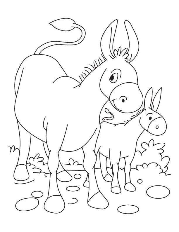 Donkey and Foal coloring page | Download Free Donkey and Foal