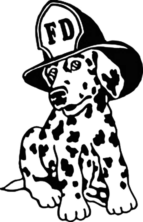 Dalmatian Fire Dog Coloring Page Coloring Home