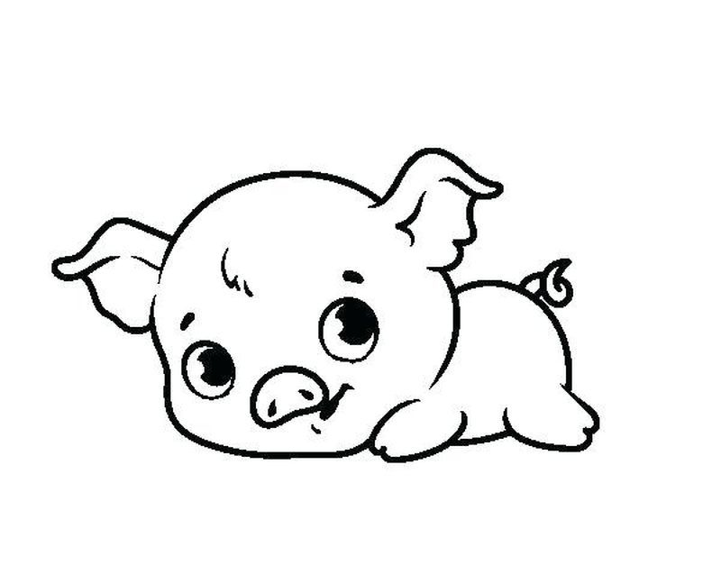 Cute Pigs Coloring Pages Coloring Home