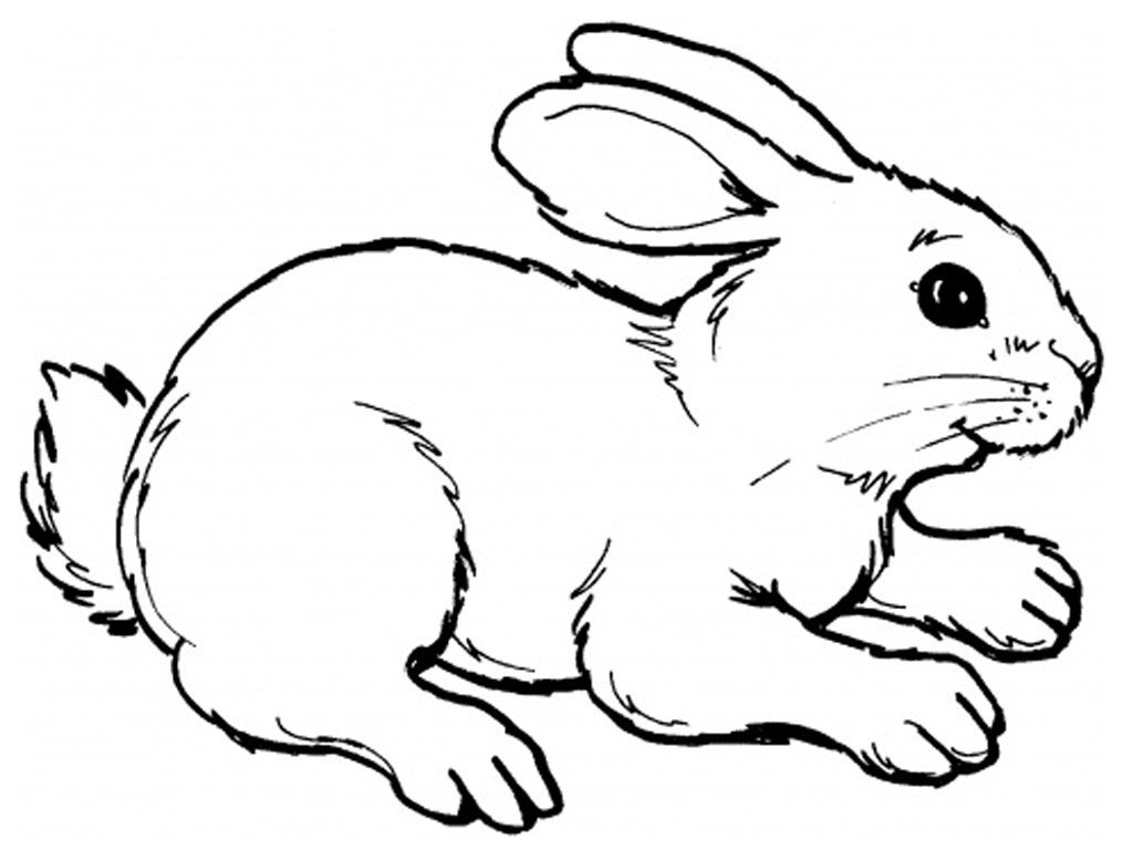 Coloring pages gone wrong - Easter Bunny Coloring Cut Out For Pinterest