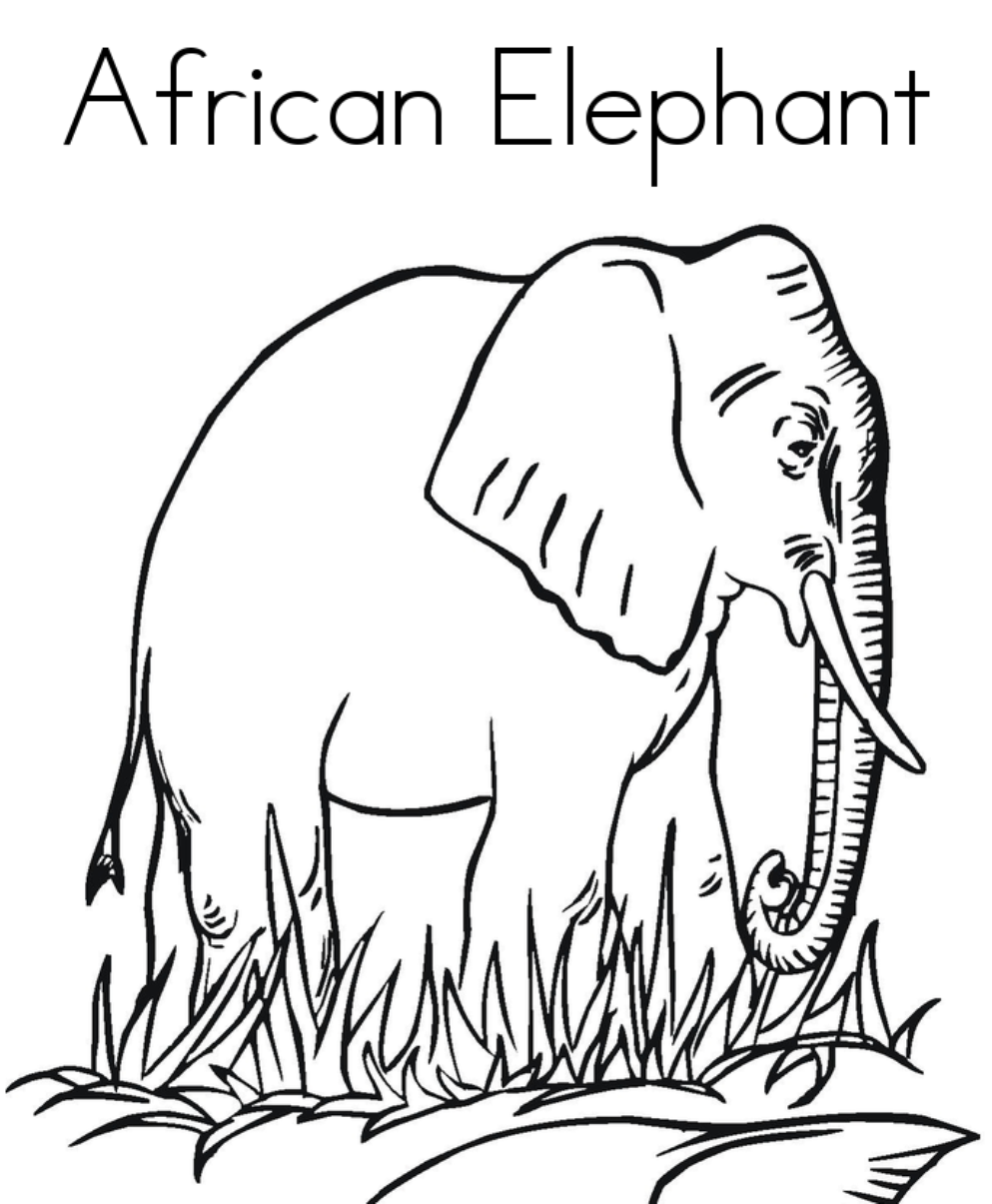 Coloring Page African Animals