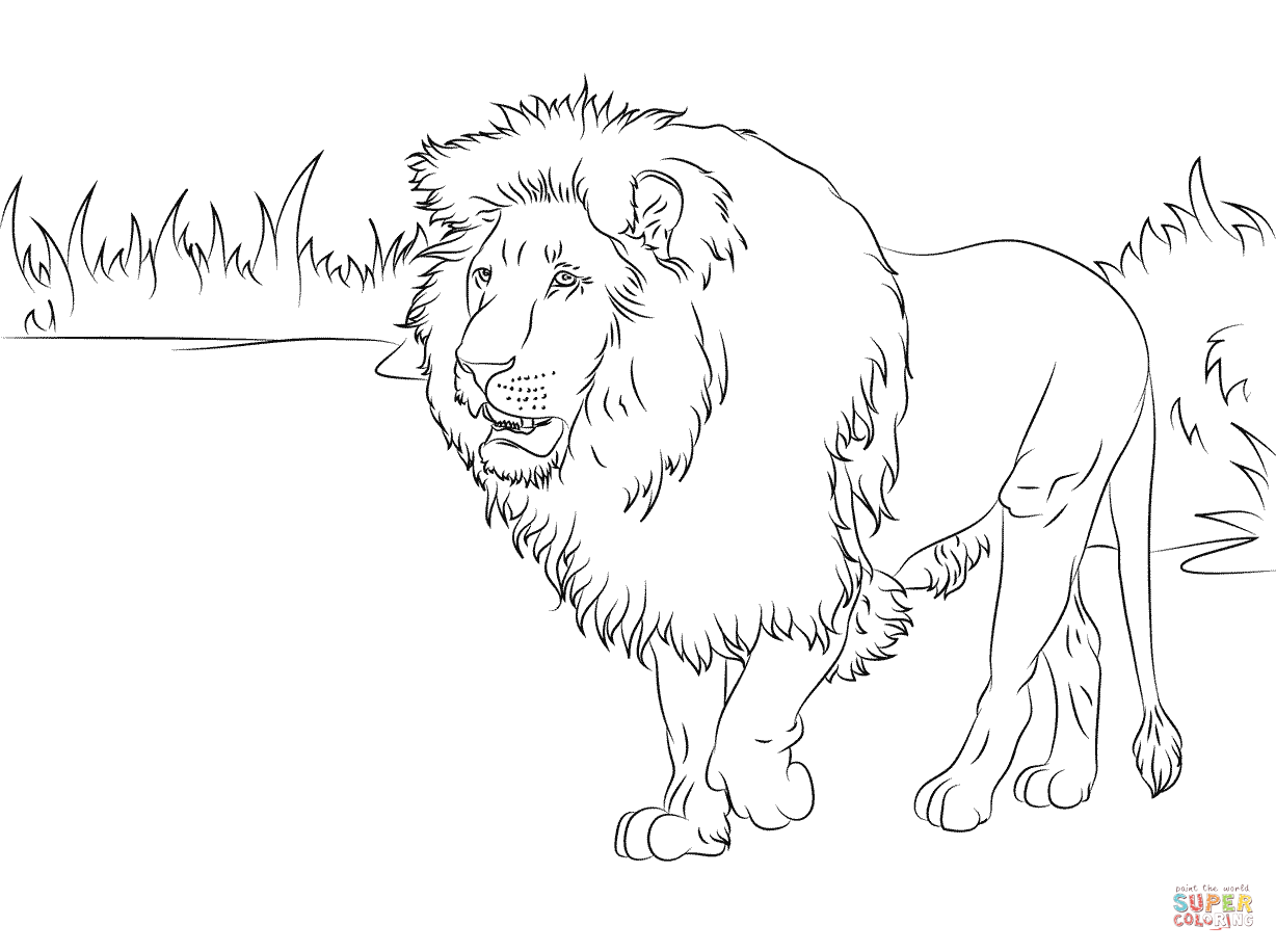 Coloring Pages For Pride Coloring Home