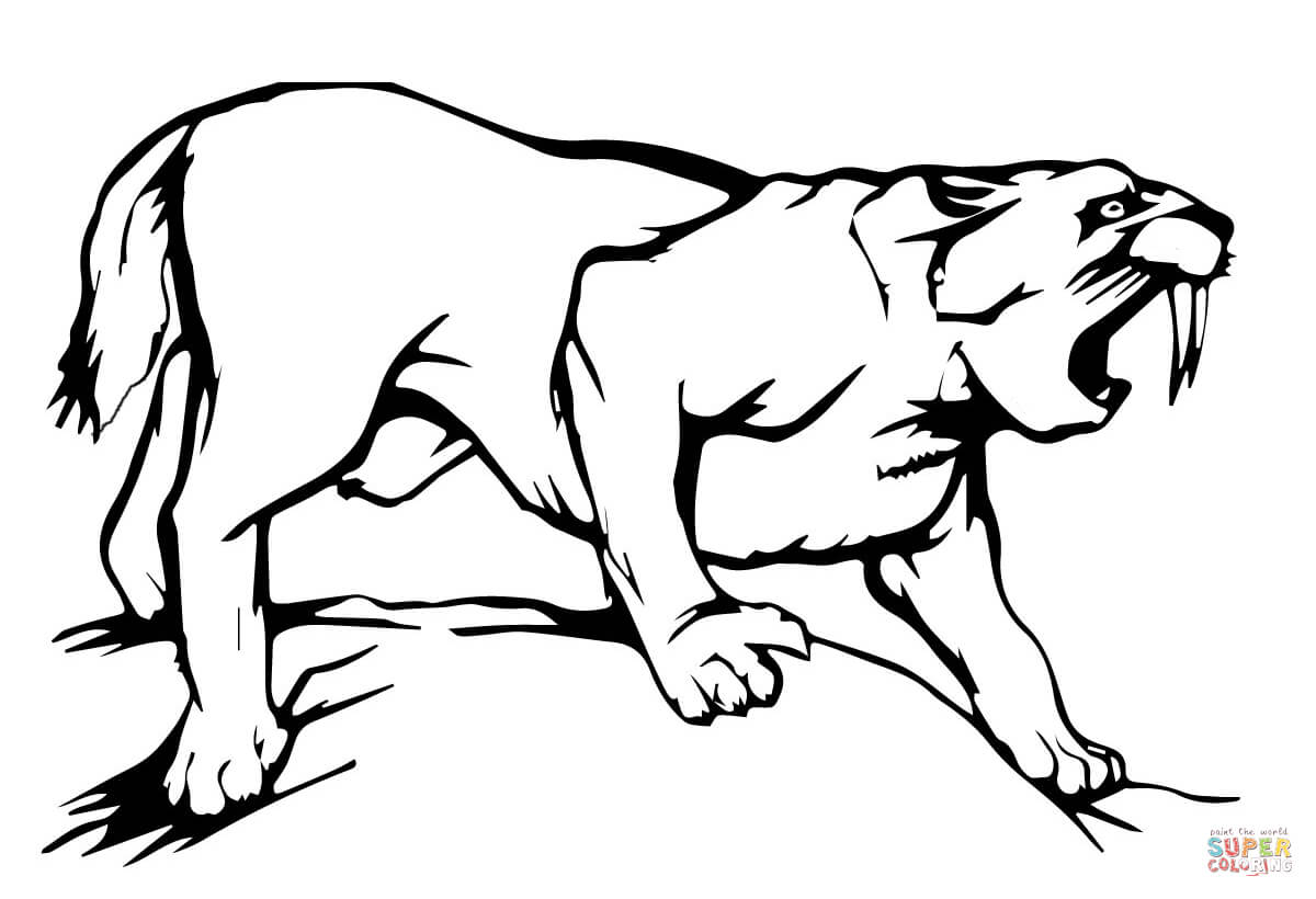 saber tooth coloring pages | Saber Tooth Tiger Coloring Pages - Coloring Home