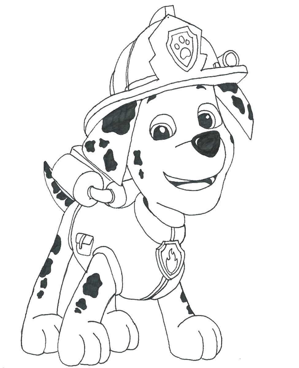 Paw Patrol Coloring Pages Aspca : Paw patrol coloring page home