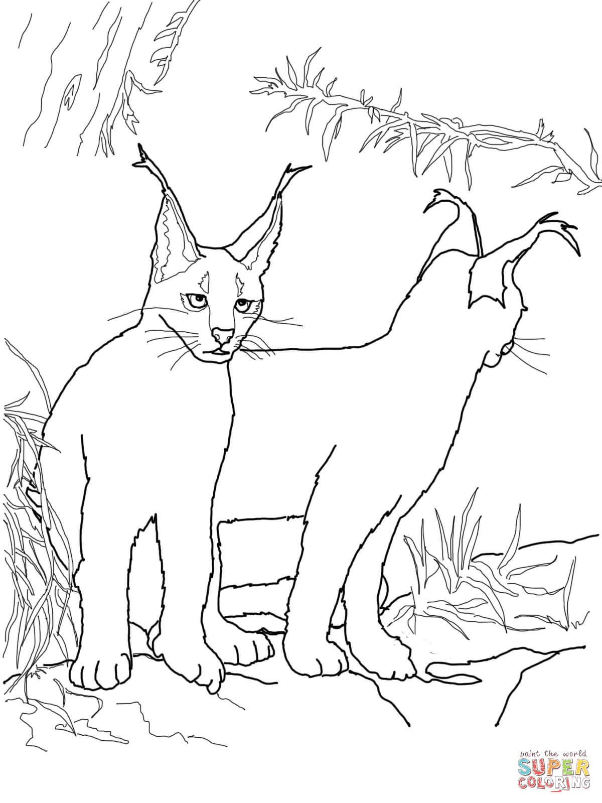 Caracal Kittens coloring page | Free Printable Coloring Pages
