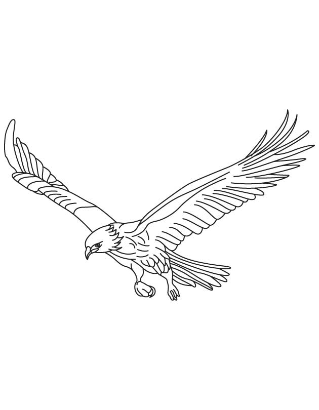 coloring pages birds flying coloring page