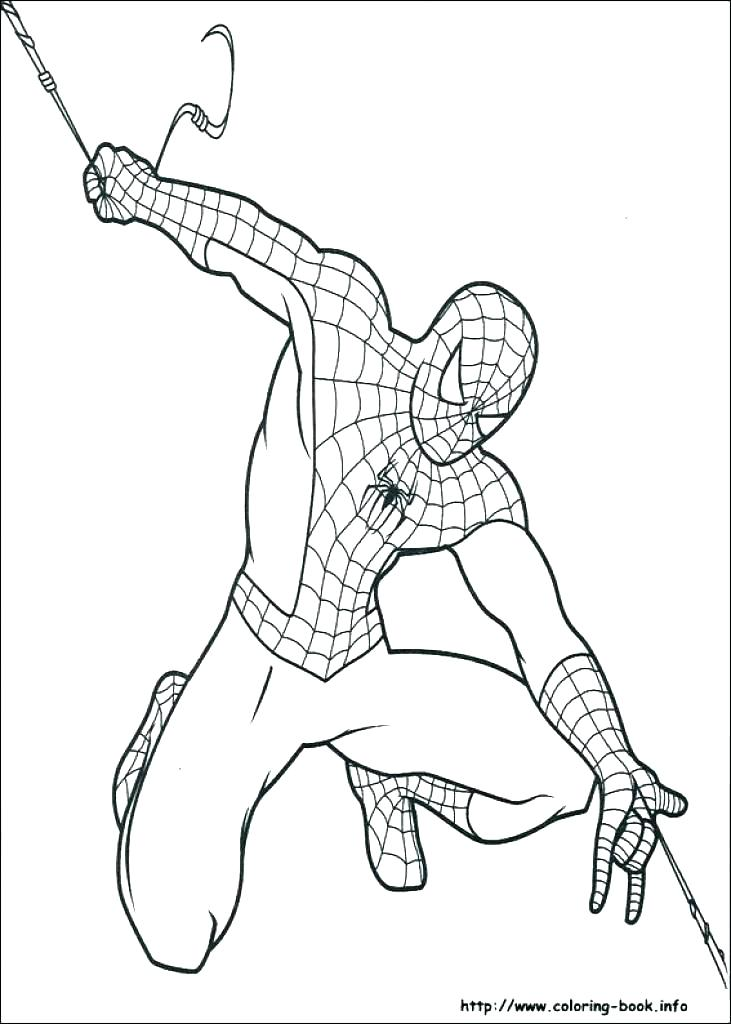 coloring pages spider – glenbuchat.info