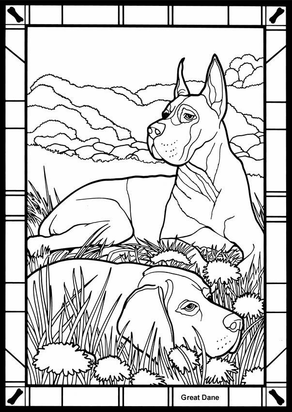 great dane coloring pages for kids and for adults