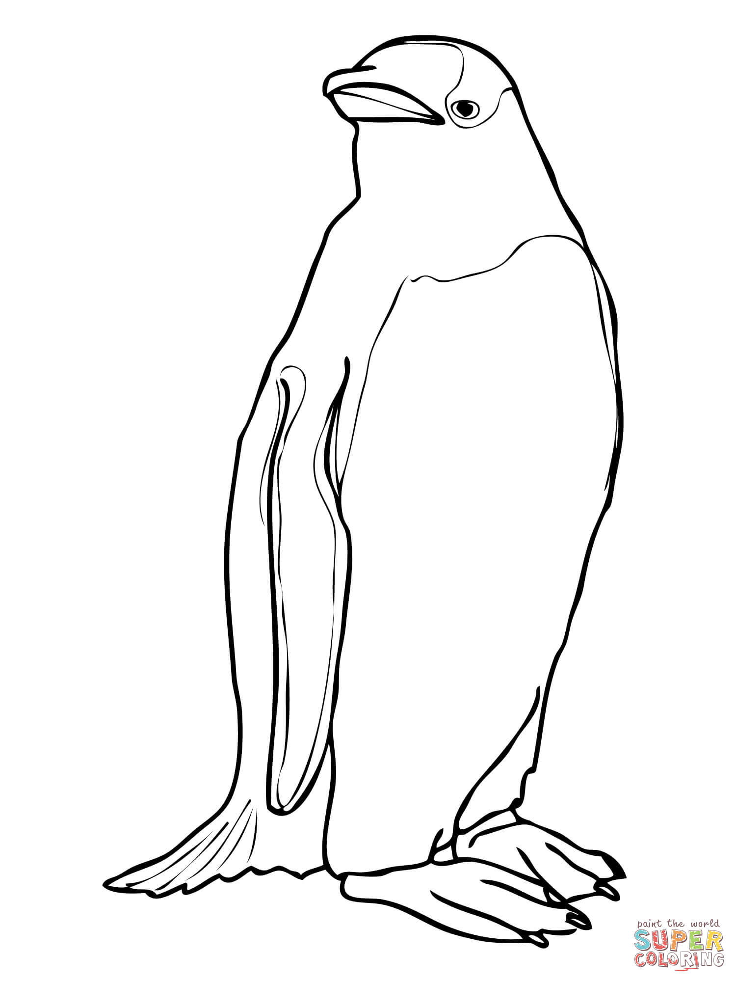 Pittsburgh penguins coloring pages printable - Gentoo Penguin Coloring Page Free Printable Coloring Pages