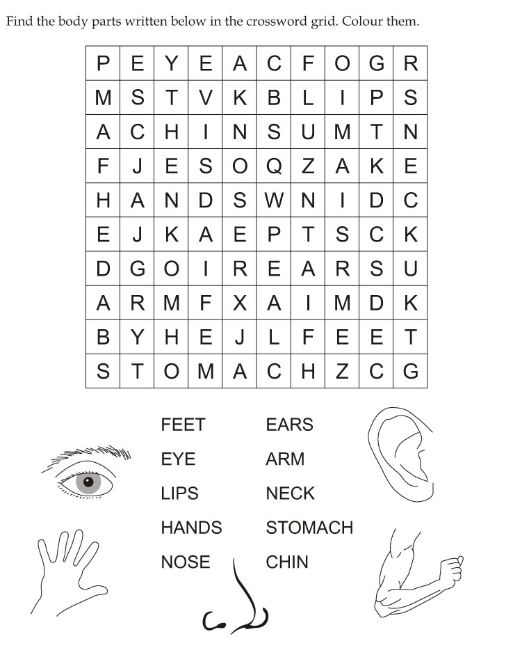 Find the body parts written below in the crossword grid | Download