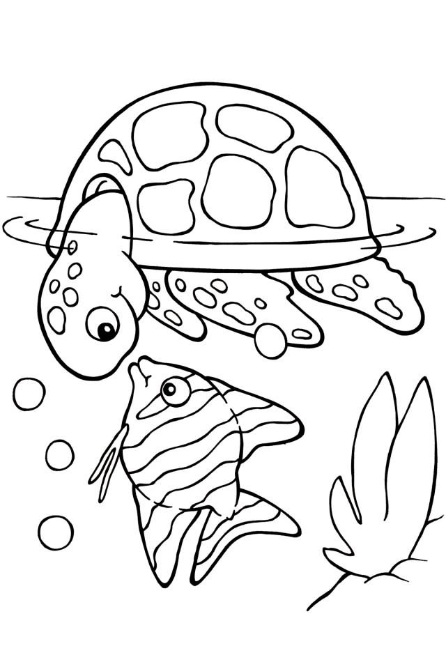 Cute Turtle Coloring Pages - AZ Coloring Pages