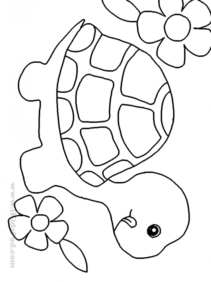 Cute Turtle Coloring Pages - Coloring Home