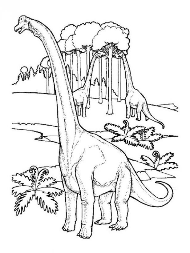 brachiosaurus pictures coloring home brachiosaurus pictures coloring home
