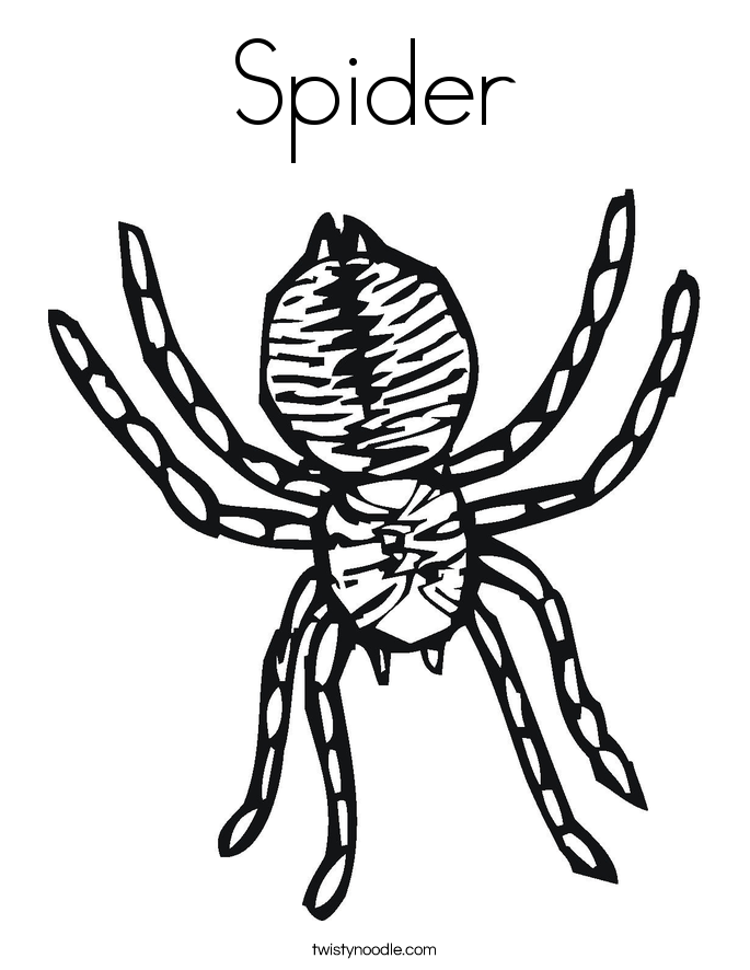Spider Coloring Pages For Kids Az Coloring Pages Coloring Page Spider