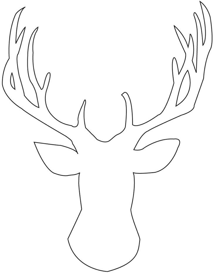Moose head drawing outline - photo#8