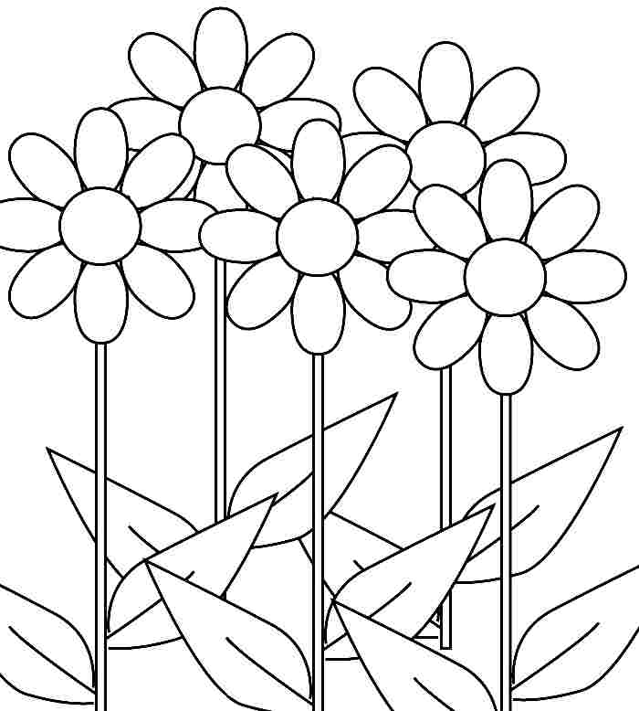 Daisy coloring pages for Daisy coloring page