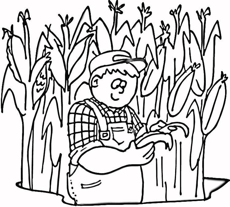 Corn Cob Coloring Page - Coloring Home