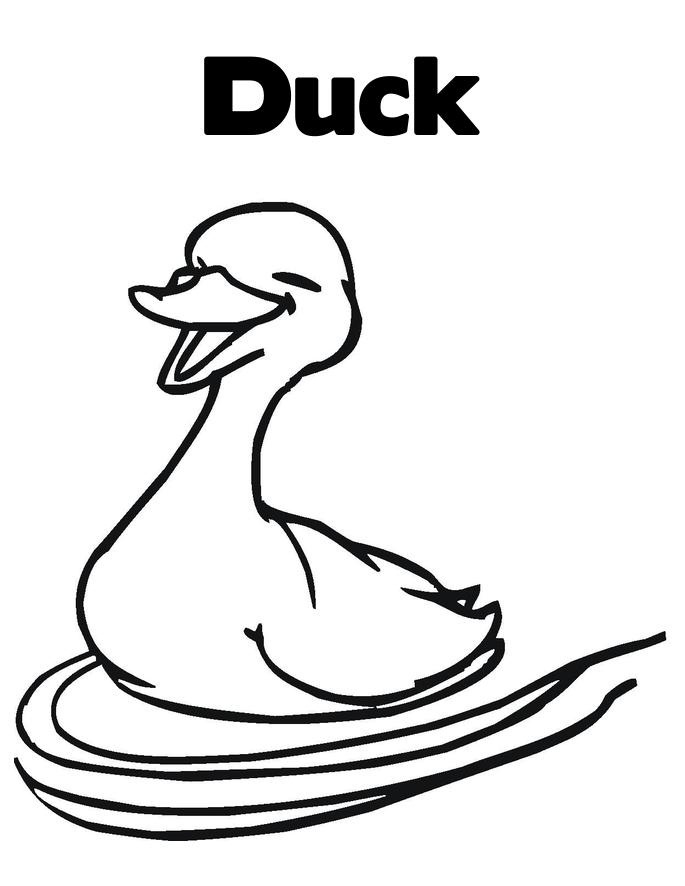 Ducks Unlimited Coloring Pages Ducks Coloring Pages 34 Ducks Unlimited ...