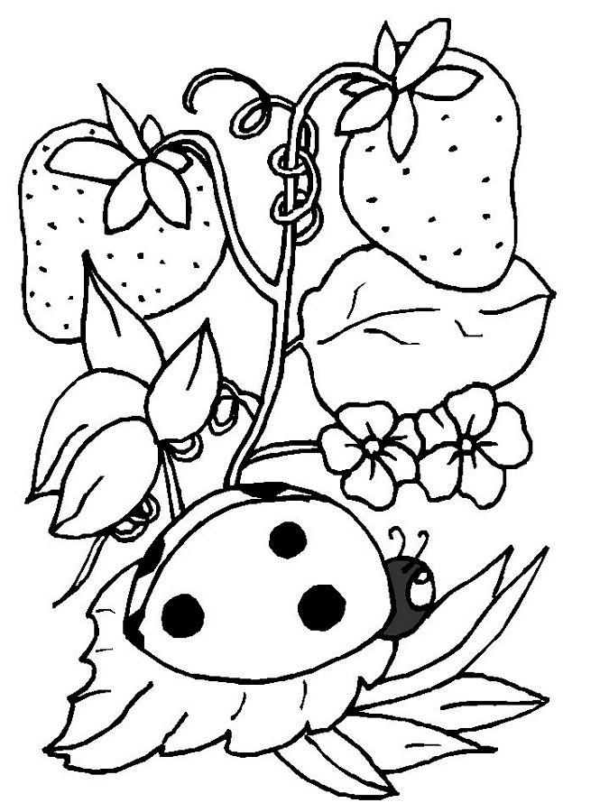 Cute Ladybug Coloring Pages AZ