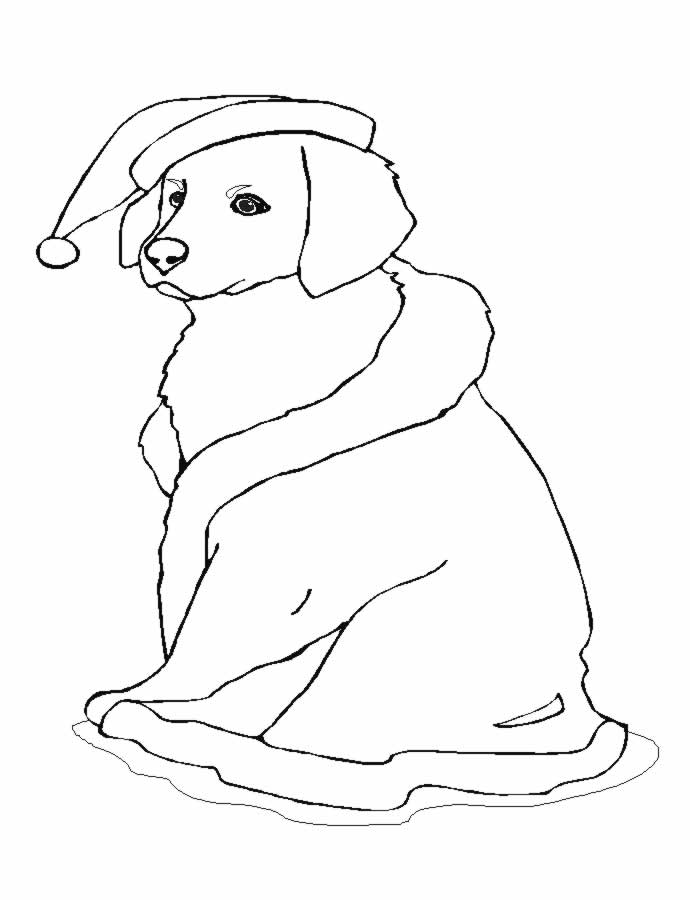 christmas dog coloring pages - photo#25