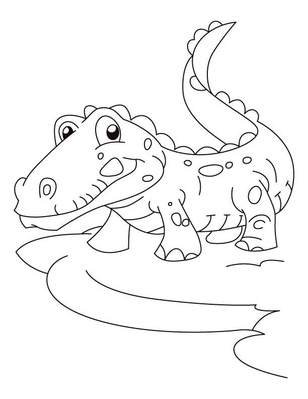 alligator coloring pages free - photo#27
