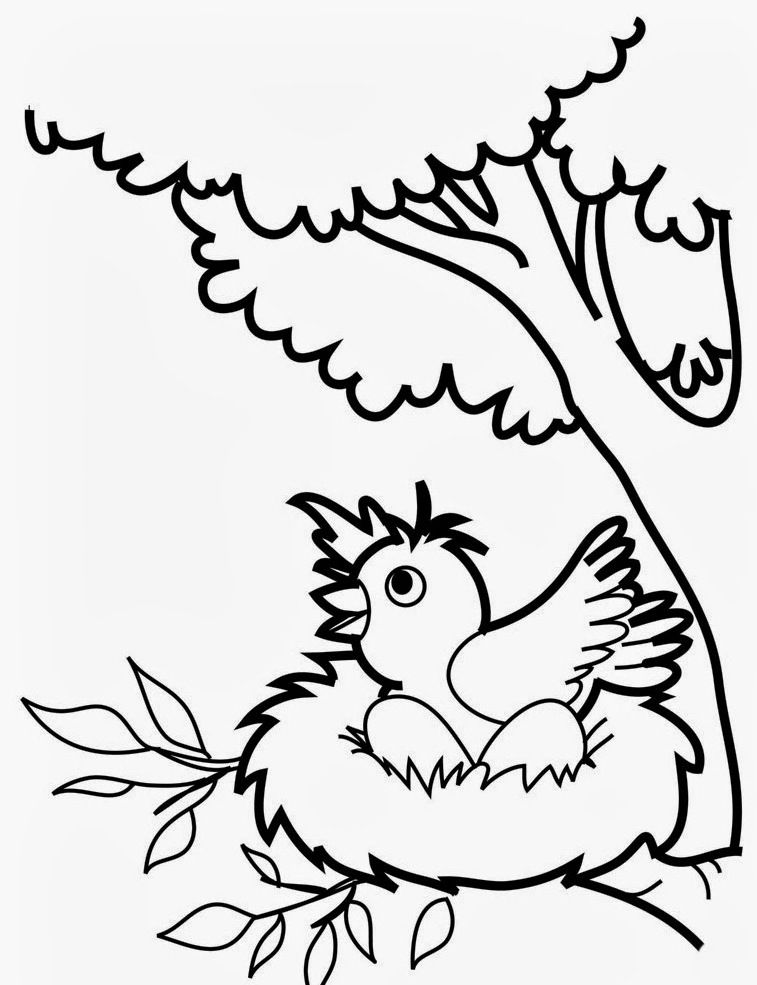 Bird Coloring Pages For Preschoolers :Kids Coloring Pages