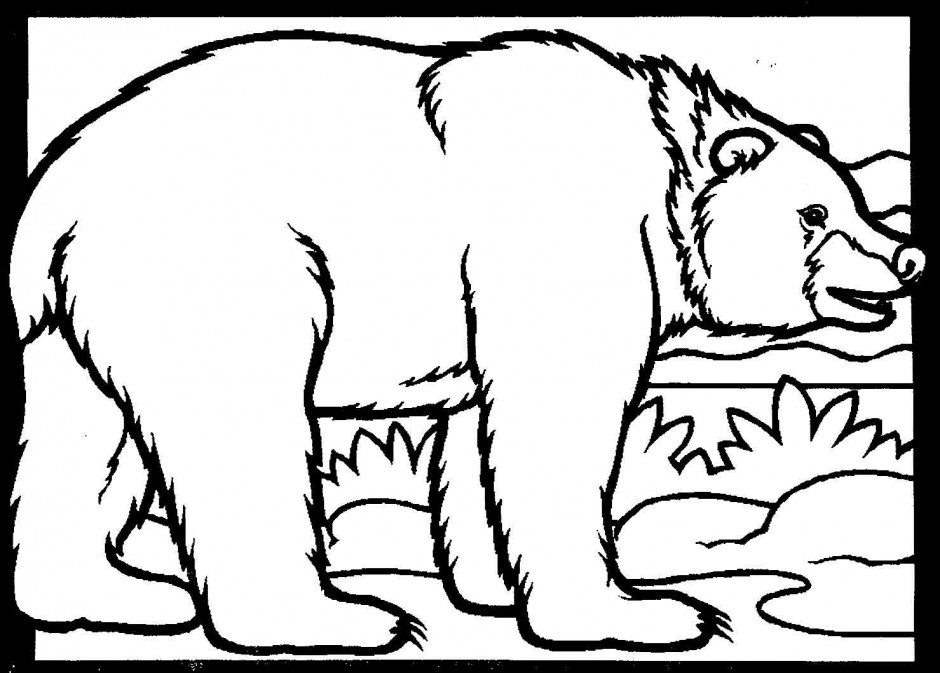 Coloring Pages Black Bear black bear coloring page az coloring pages