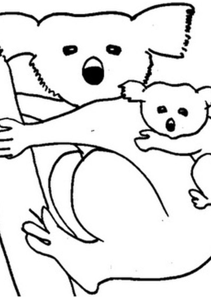 Funny Mother Koala And Baby Koala Coloring Pages Best Resolutions