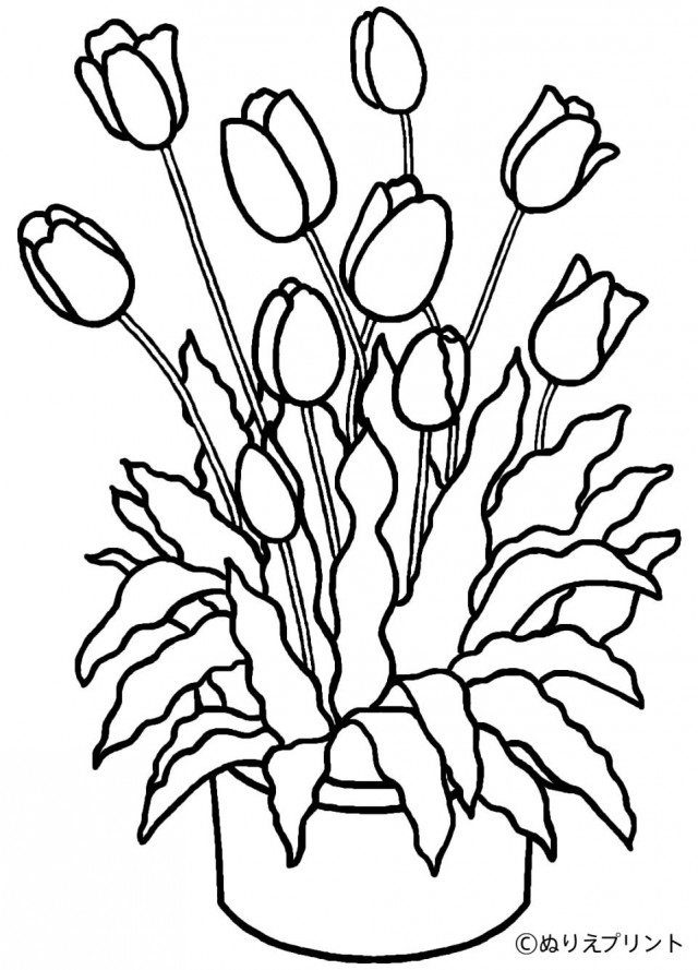 barnabas coloring page - paul and barnabas coloring pages sketch coloring page
