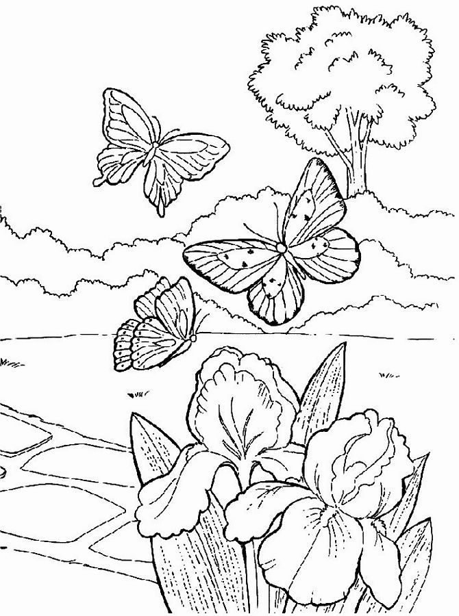 Free Printable Spring Coloring Pages For Adults - Coloring Home
